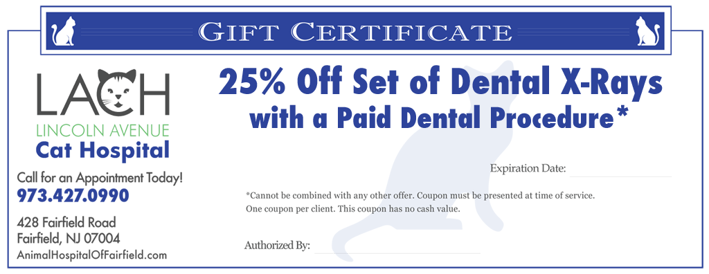 25% Off Dental X-Rays - Lincoln Avenue Cat Hospital